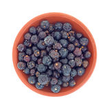 Bowl filled with juniper berries Royalty Free Stock Photography