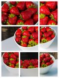Bowl filled with succulent juicy fresh ripe red strawberries Stock Photos