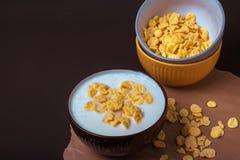Bowl with flakes in homemade greek yogurt. Healthy food. Breakfast stock photos