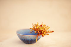 Bowl and Flower. Loving Kindness. Photograph of a simple hand crafted ceramic bowl with a flower Stock Images