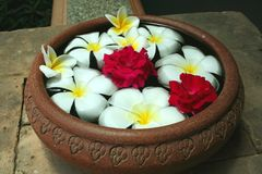 Bowl of flowers. A bowl of water with flowers, traditional asian Royalty Free Stock Image