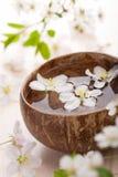 bowl flowers spa λευκό Στοκ φωτογραφία με δικαίωμα ελεύθερης χρήσης