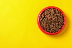 Bowl with food for cat or dog on color backgroun Pet care. Bowl with food for cat or dog on color background. Pet care Royalty Free Stock Photo