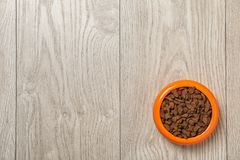 Bowl with food for cat or dog Royalty Free Stock Photo