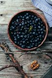Bowl with forest blueberry just picked and kept unwashed Royalty Free Stock Image
