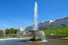 The `Bowl` fountain against the background of the Grand Peterhof Palace in the sunny May afternoon. Petergof Stock Photo