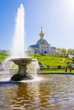 The Bowl Fountain in Peterhof. Stock Photos