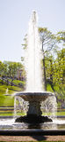 The Bowl Fountain in Peterhof Stock Image