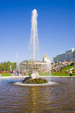 The Bowl Fountain in Peterhof. Royalty Free Stock Photo