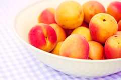 Bowl of fresh apricots Royalty Free Stock Photography