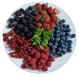 Bowl of fresh berries and fresh herbs Royalty Free Stock Photography