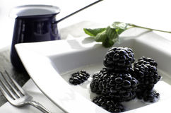 Bowl of fresh blackberries and milk. A bowl of freshly picked blackberries in a bowl of milk Stock Image