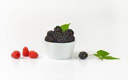Bowl of fresh blackberries Royalty Free Stock Photos