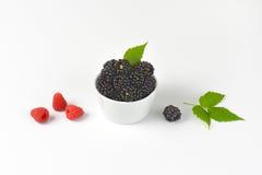 Bowl of fresh blackberries Royalty Free Stock Image