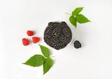 Bowl of fresh blackberries Stock Images