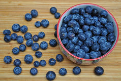 Bowl of fresh blueberries Stock Images