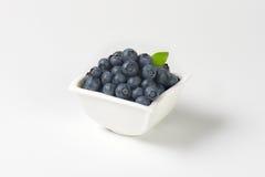 Bowl of fresh blueberries Royalty Free Stock Photos