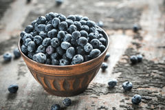 Bowl of fresh blueberries Stock Photo