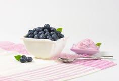 Bowl of fresh blueberries and yogurt Royalty Free Stock Photos