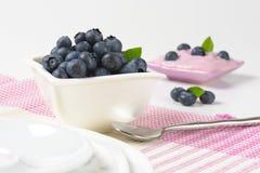 Bowl of fresh blueberries and yogurt Royalty Free Stock Photo