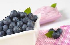 Bowl of fresh blueberries and yogurt Royalty Free Stock Images