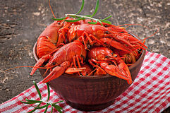 Bowl of fresh boiled crawfish royalty free stock photos