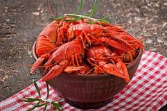 Bowl of fresh boiled crawfish Royalty Free Stock Photos