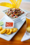 Plate of ceviche Stock Images