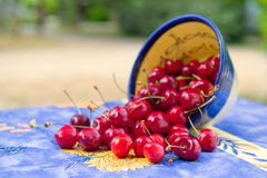 Bowl fresh cherries Royalty Free Stock Image