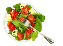 A bowl of fresh colorful salad Stock Photo