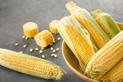Bowl and fresh corn cobs. On table Royalty Free Stock Photography