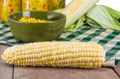 Bowl of fresh corn relish with corn. Corn relish in a green bowl with ears of fresh corn Royalty Free Stock Photos