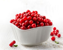 Bowl of fresh cowberries. On white wooden table Royalty Free Stock Photography