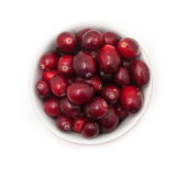 Bowl of fresh cranberries Royalty Free Stock Images