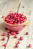Bowl with fresh cranberries Royalty Free Stock Photography