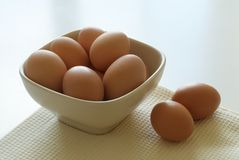 Bowl of fresh eggs Stock Image