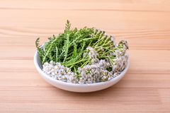 Fresh yarrow tea. Bowl of fresh flowers and leaves of yarrow with a wooden background Stock Photos