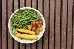 Bowl of fresh garden vegetables. Fresh green beans, squash and tomatos from a home garden Royalty Free Stock Photo