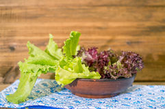 Bowl of fresh green and red leaf lettuce Royalty Free Stock Images
