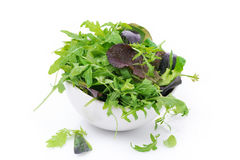 Bowl of fresh green salad, isolated. On white Royalty Free Stock Photos