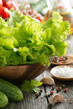 Bowl with fresh green salad, vegetables, spices Royalty Free Stock Image