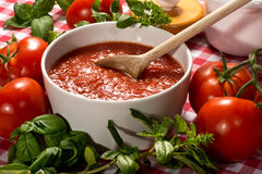 Bowl of fresh healthy homemade tomato puree Stock Photography