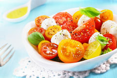 Bowl of a fresh and healthy Mediterranean salad Royalty Free Stock Photography