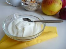 Bowl of fresh healthy white yoghurt Royalty Free Stock Images