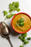 Bowl of fresh homemade sweet potato soup Royalty Free Stock Images