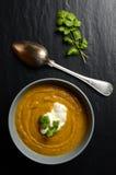 Bowl of fresh homemade sweet potato soup Royalty Free Stock Photos