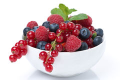 Bowl with fresh juicy berries, close-up, isolated Stock Photography