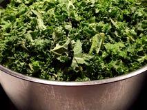 Bowl of fresh kale stock photography