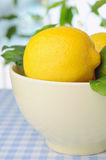 Bowl with fresh lemons on the table and green plants Royalty Free Stock Photos