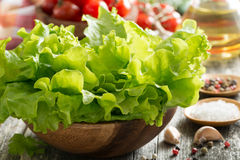 Bowl with fresh lettuce, tomatoes, spices and olive oil Stock Image